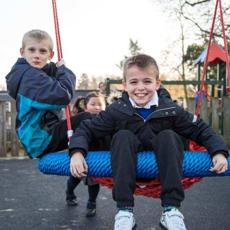 Group of little boys posing together on a swing smiling