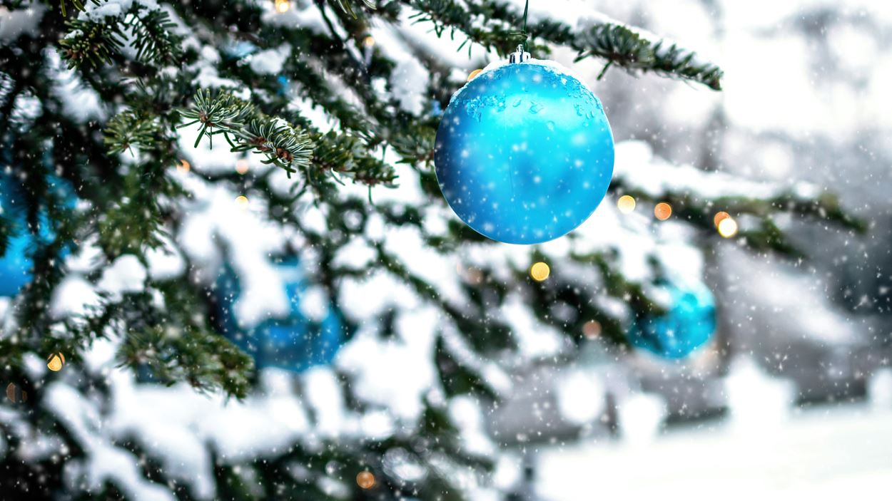 blue-bauble-on-green-christmas-tree-3626214.jpg